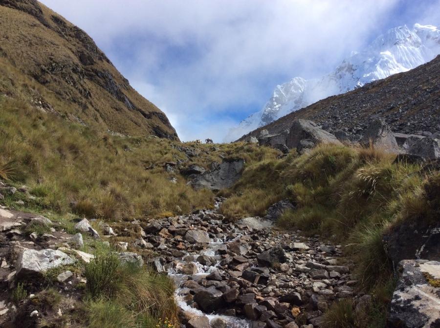 Salkantay trekking from Cusco to Machupicchu