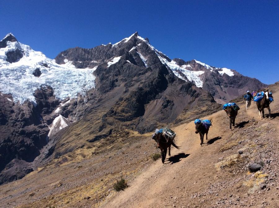 trekking Lares adventure in 4 days with Machupicchu