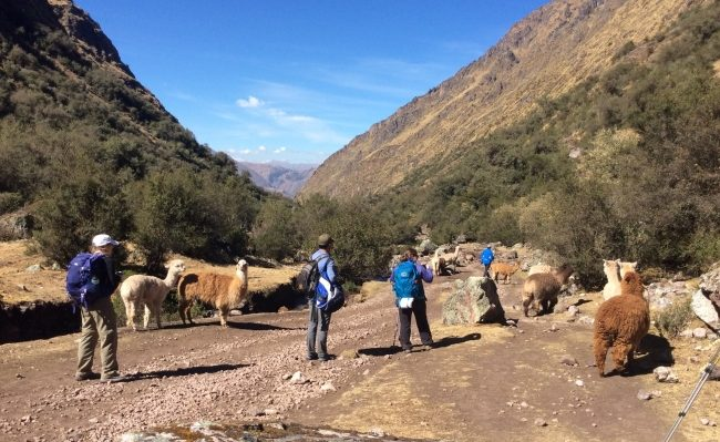 Cusco Lares trekking with biking Peru