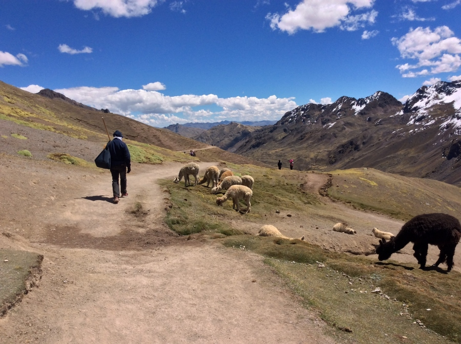 Lares trail trek with biking in Peru