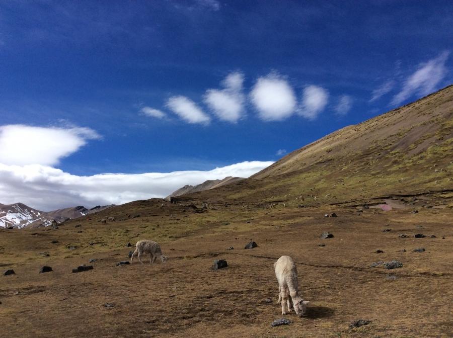 Ausangate trail hiking in Peru