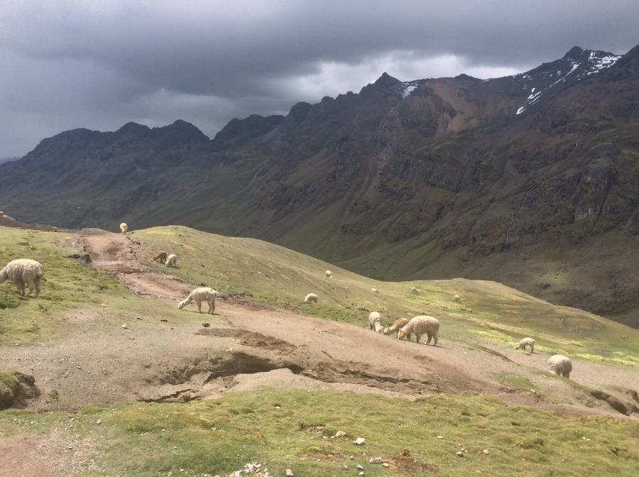 Ausangate trekking in Peru