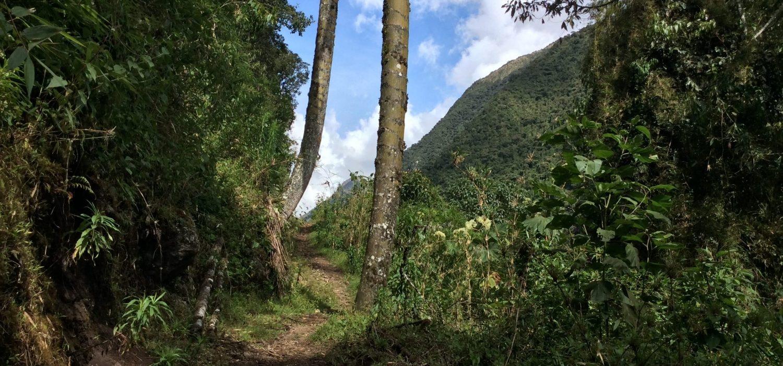 Vilcabamba trail to Machupicchu in 5 days
