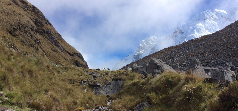 hiking Salkantay trail with Machupicchu in 3 days