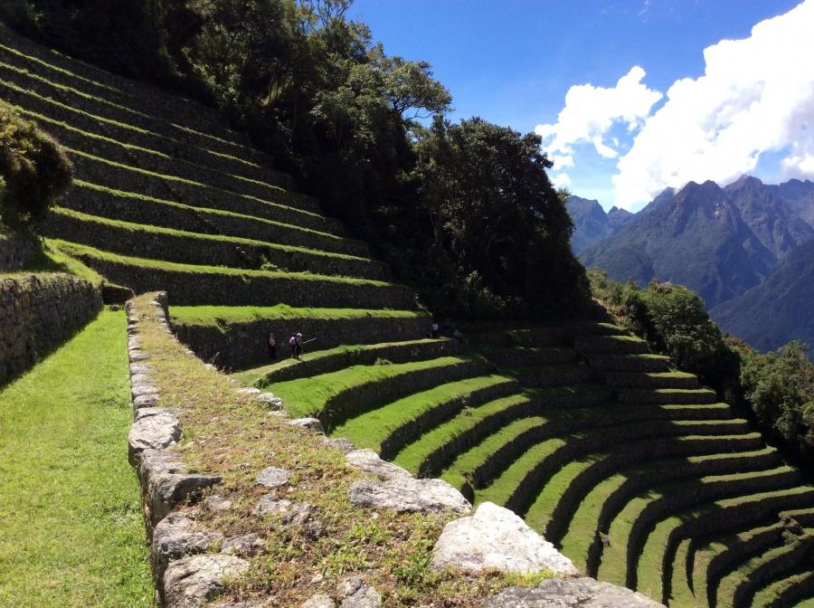 Wiñayhuayna Inca site hike Machupicchu