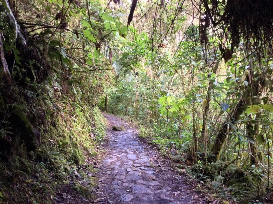 Inca trail path 2 days to Machupicchu