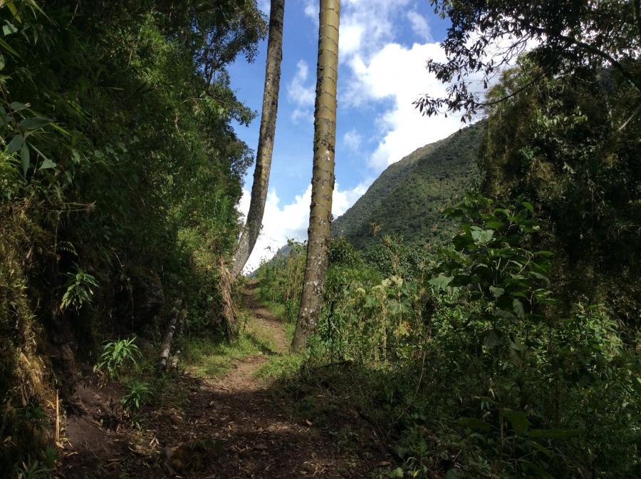 trekking to Vilcabamba with Machupicchu