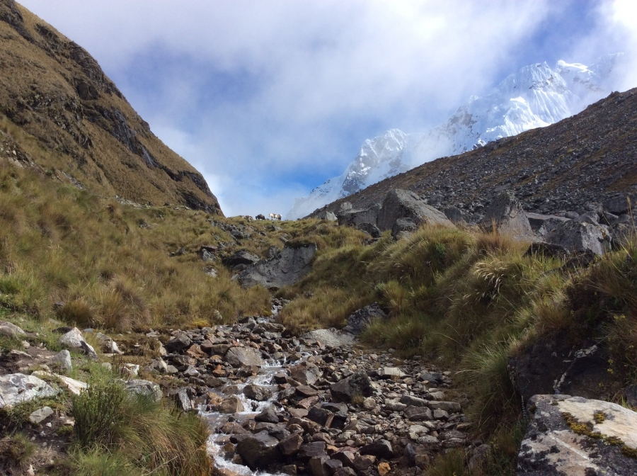 Salkantay trip to Machupicchu in 5 days