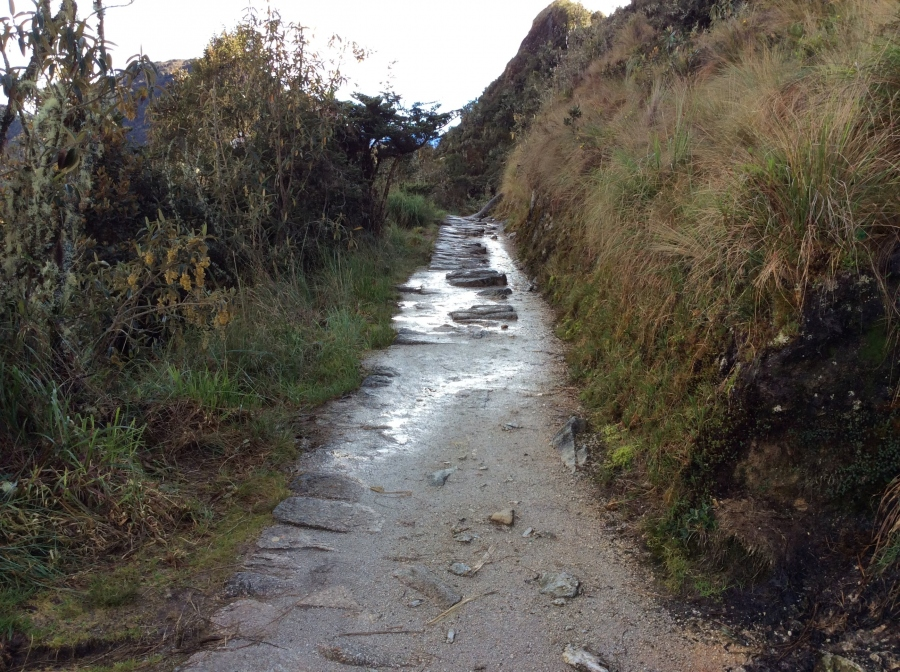 Inca trail hike in 4 days to Machupicchu