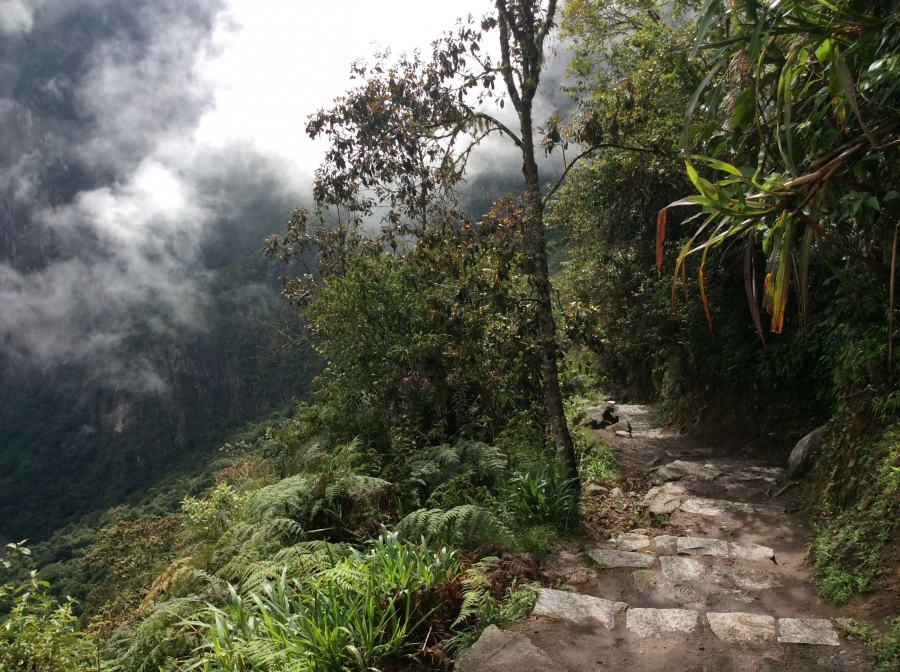 Machupicchu trail hike to sun gate