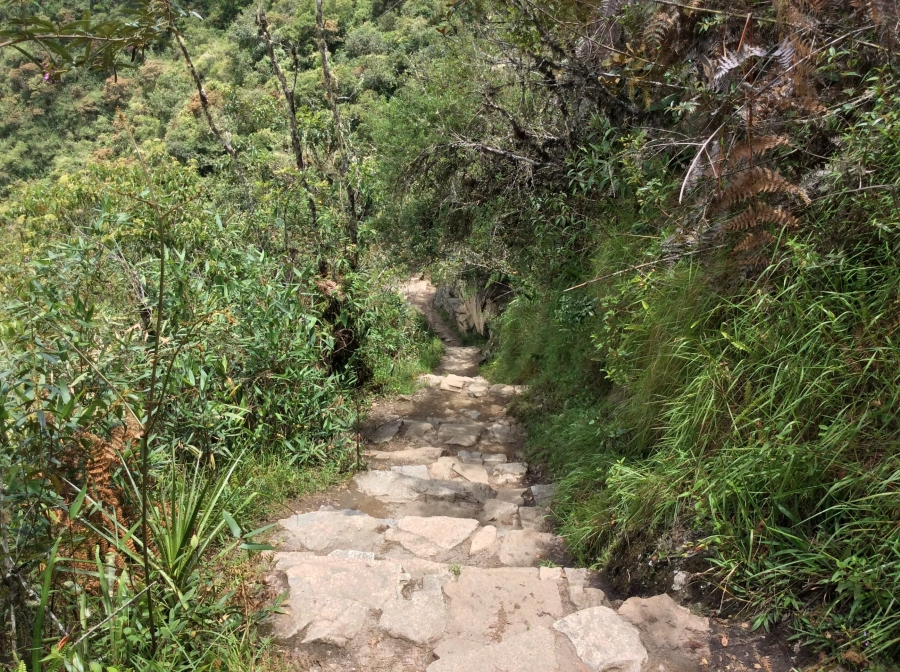 trail to Machupicchu mountain trek in Peru