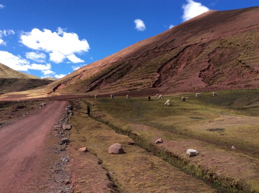 Palccoyo rainbow mountain tour in Peru